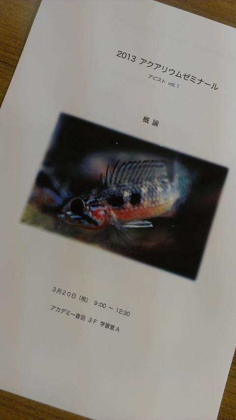 IMAG0386.jpg