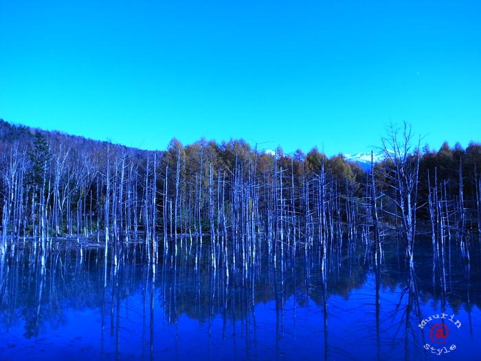 青い池 (サムネイルなので画像をクリックすると大きくなります。) 撮影:GR ... 青い池