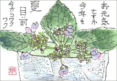 紫陽花イラスト風