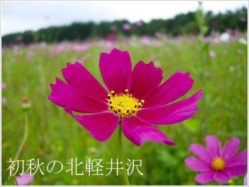 初秋の北軽井沢1