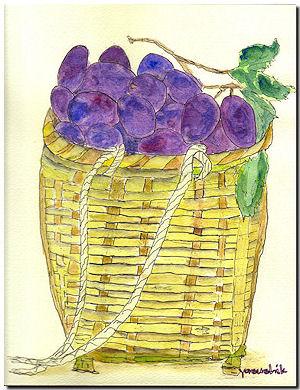 プルーンの収穫