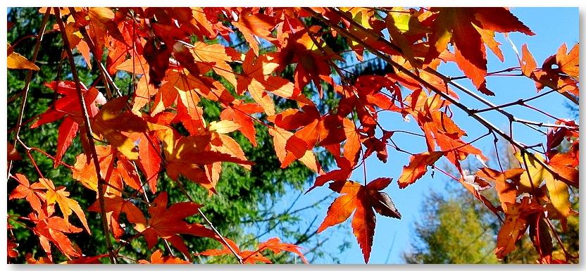 2014.10.25-5.jpg