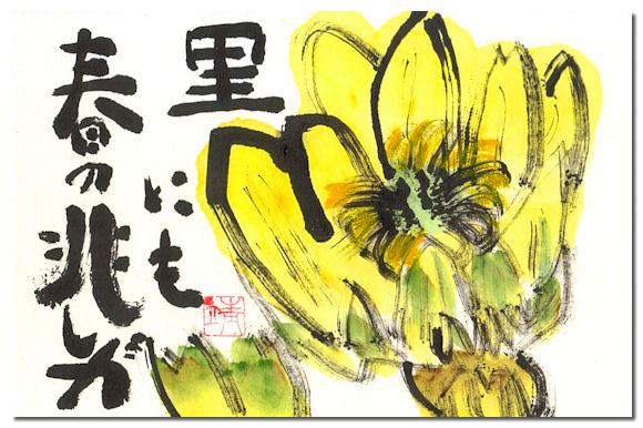 福寿草5.jpg