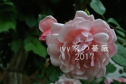 2017.09.28-2.jpg