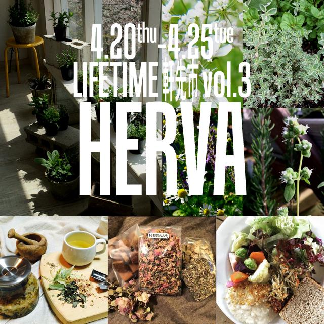 LIFETIME軒先市vol.3 HERVA(ハーヴァ)ハーブの苗と、ハーブなお菓子・ハーブティーの販売