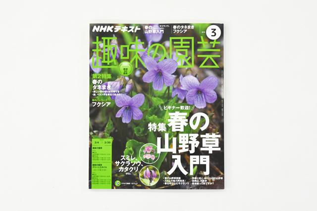 テキスト「趣味の園芸」3月号