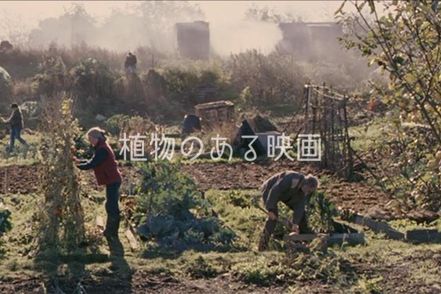 植物のある映画#001「家族の庭」
