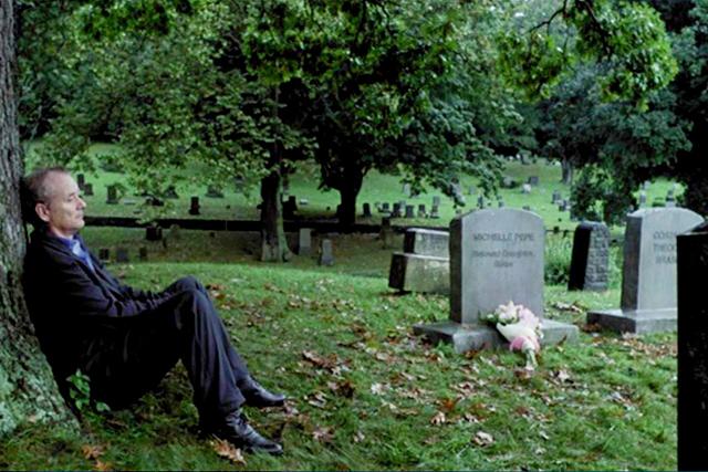 植物のある映画#002 ブロークン・フラワーズ