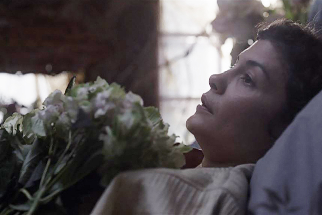 植物のある映画LÉcume des jours(ムード・インディゴ、2013)