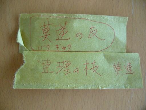 藩主が箸入れ裏に書いた走り書き。