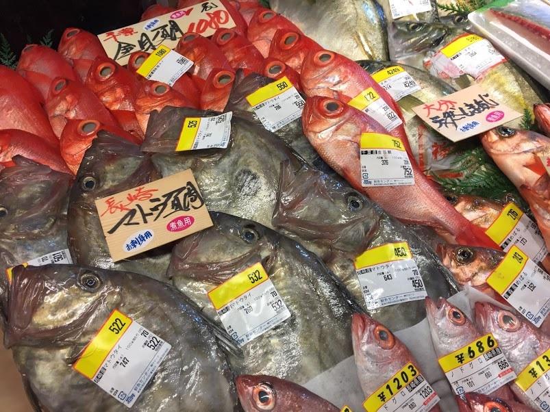 日本海お魚センター。.jpg