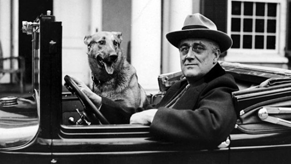 Franklin Delano Roosevelt with his Dog.jpg