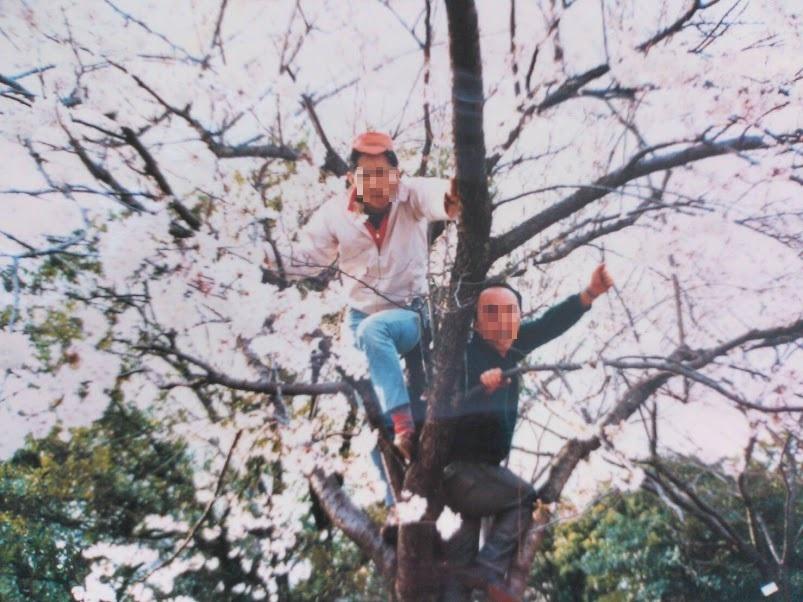 1985年花見 (掲載).jpg