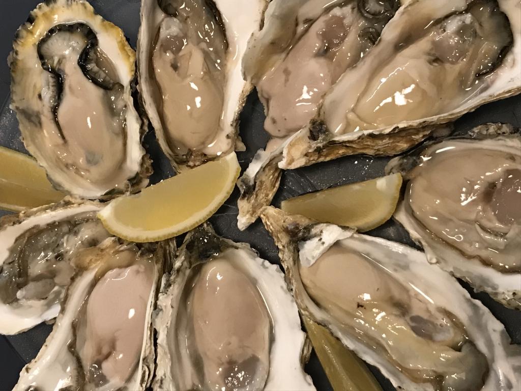 夜森町仙鳳趾牡蛎。