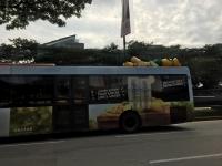2911バス