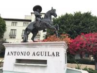 アントニオアルゲイラ