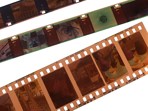 110フィルムと35mmフィルム