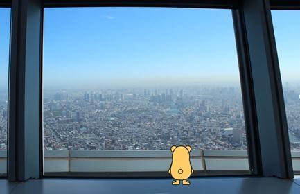 450m展望.jpg
