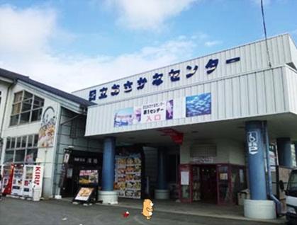 おさかなセンターケル2.jpg