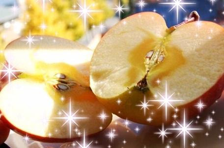 中里レジャー蜜りんご.jpg