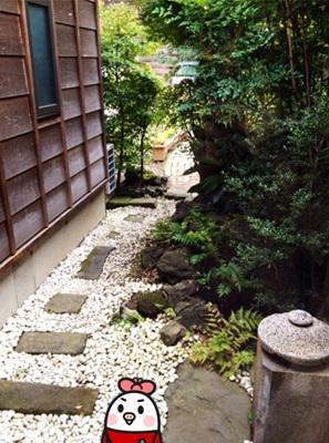 riceforest7.jpg