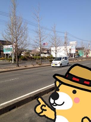 交通量10.jpg