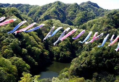竜神峡鯉のぼり3.jpg