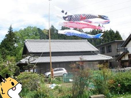 笠間兄弟7.jpg