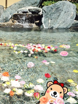 森林の温泉26.jpg