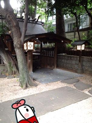 乃木神社20.jpg
