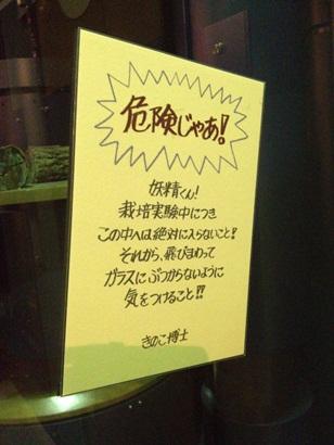 きのこ博士館48.jpg