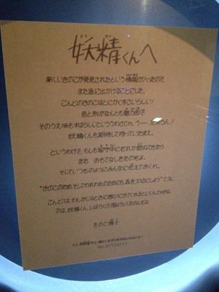 きのこ博士館53.jpg