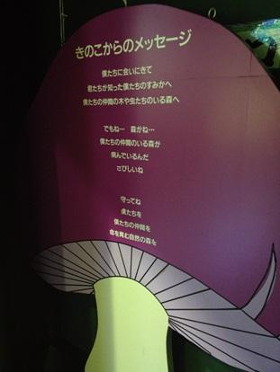 きのこ博士館54.jpg