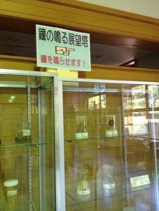 きのこ博士館55.jpg