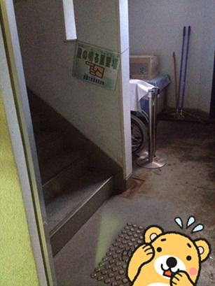 きのこ博士館57.jpg