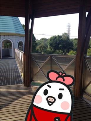 きのこ博士館59.jpg