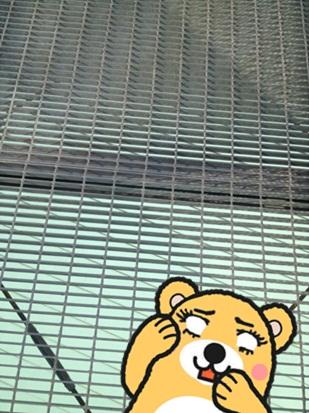 きのこ博士館61.jpg