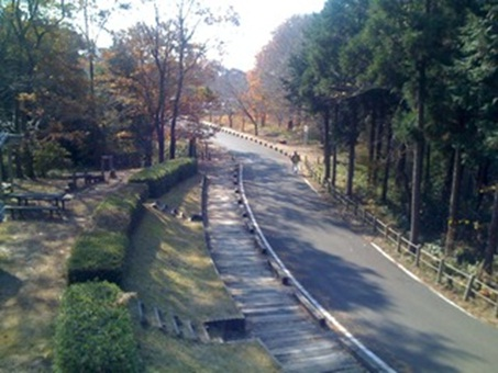 森林公園1.jpg