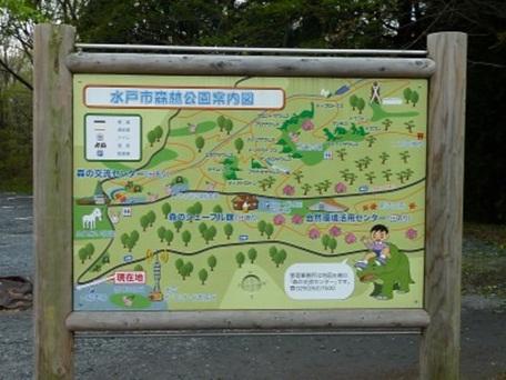 森林公園40.jpg