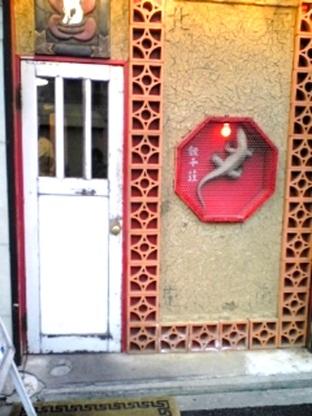 紅蜥蜴30.jpg