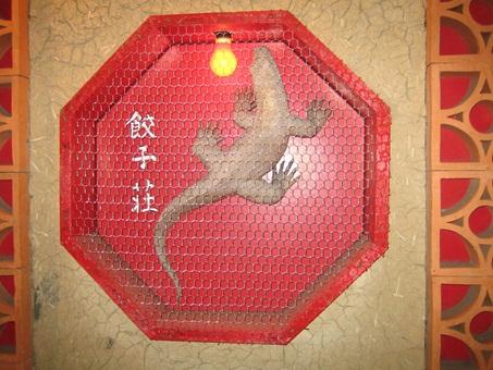 紅蜥蜴31.jpg