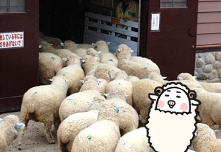 2015羊2.jpg