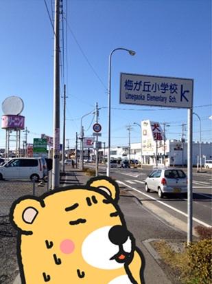 じゅんちゃん1.jpg