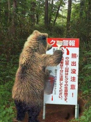 きのこ狩り15.jpg