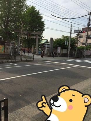今戸神社3.jpg