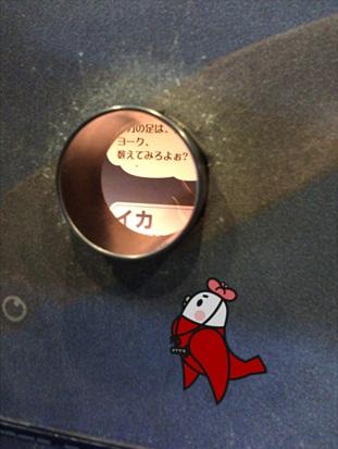 めんたいパーク16.jpg