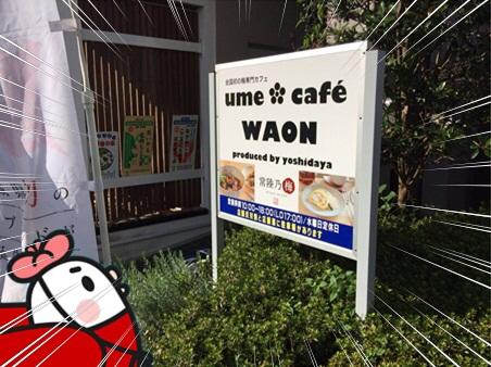 WAON2.jpg