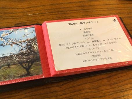 WAON14.jpg