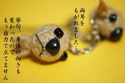 _MG_6039.jpg