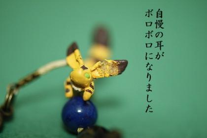 _MG_6046.jpg